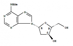2'-Deoxy-N-methyladenosine